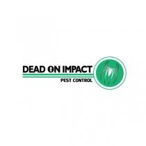 dead-on-impact.jpg