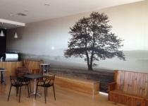 Custom Wallpaper Adelaide